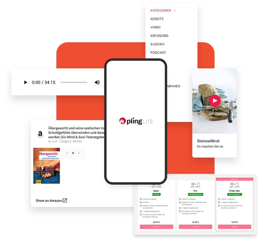 Digital Publishing Software: Monetarisierung Illustration